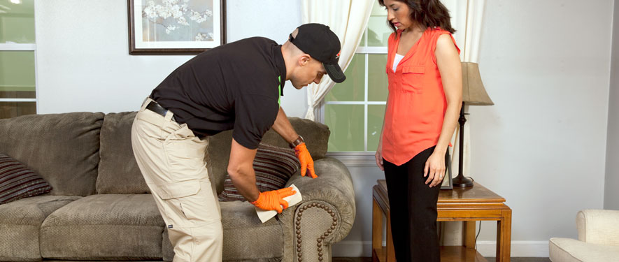 Frostburg, MD carpet upholstery cleaning