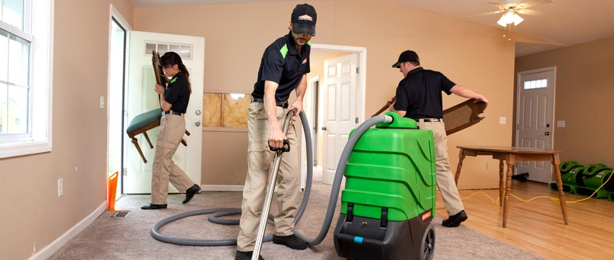 Frostburg, MD cleaning services